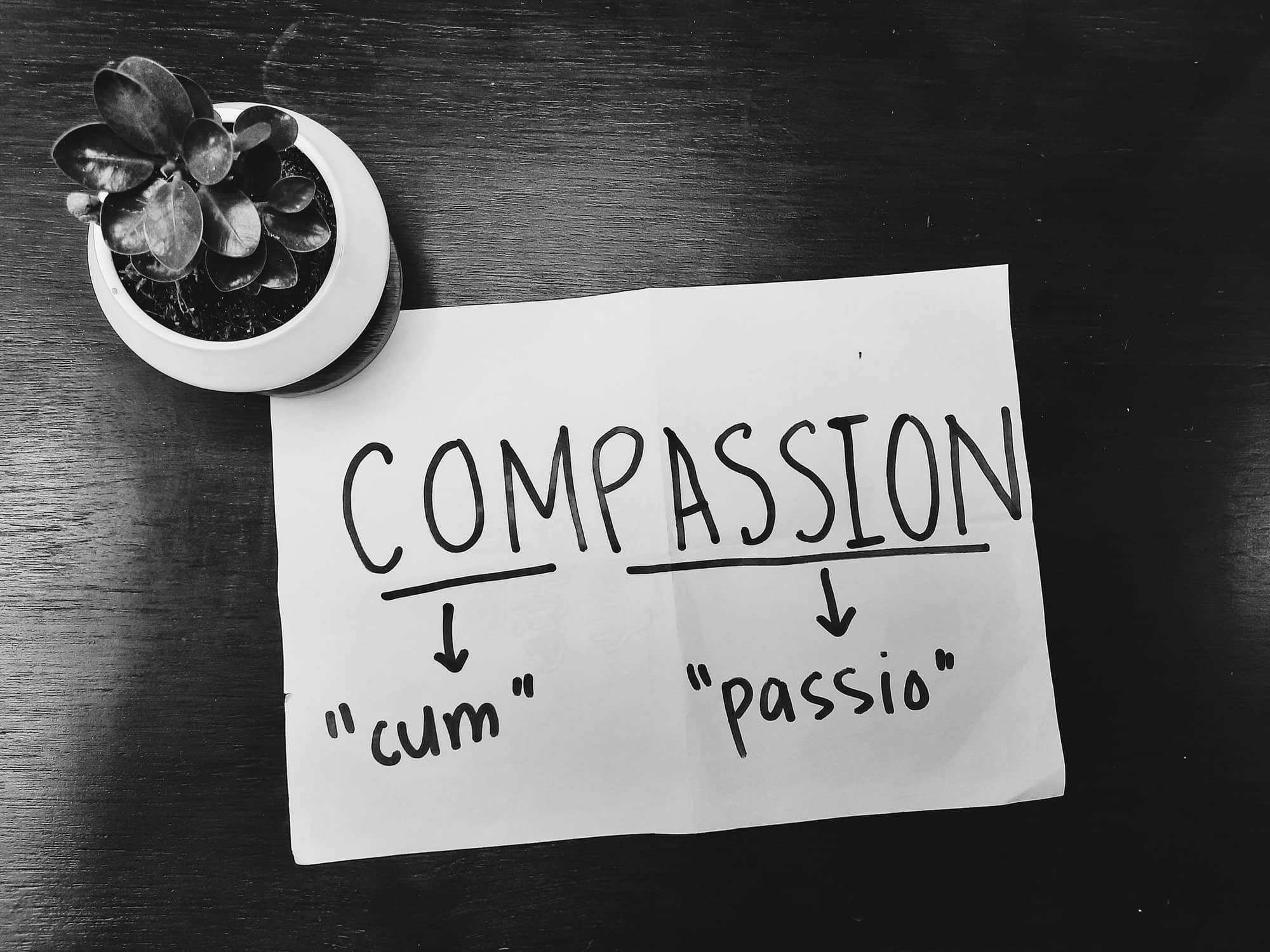 Hope in the God of Compassion